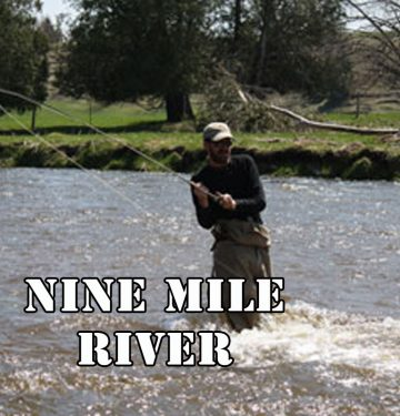 Nine Mile River Ontario