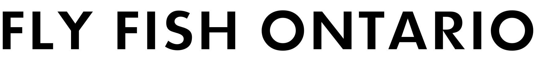 cropped-logo-9.png